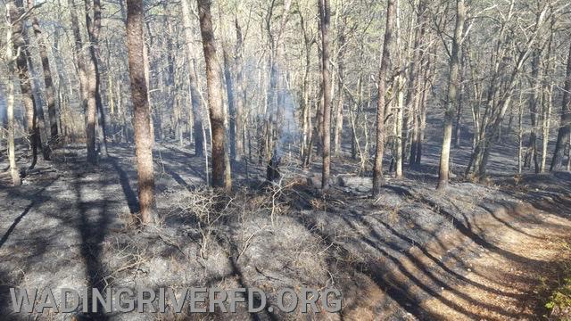 Ridge Brush Fire. Photo By. WRFD
