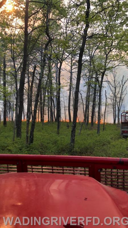 Manorville Brush Fire. Photo By Ex Capt. Pirnak WRFD