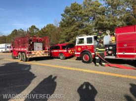 Mutual Aid Brush Fire East of Freshpond Ave. Photo By. WRFD